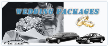 Winnipeg Wedding Limos